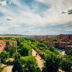 Rivas, entre las ciudades del mundo que mejor cuidan sus árboles