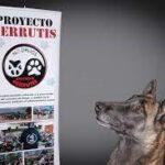Perrutis ofrece un taller en Covibar sobre iniciación al comic con Jerry Zamora