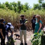 Podemos Rivas sobre Día Mundial del Medio Ambiente