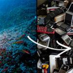 Los océanos están en peligro