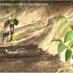 Primer informe para modificar la recogida y tratamiento de residuos orgánicos en Rivas Vaciamadrid