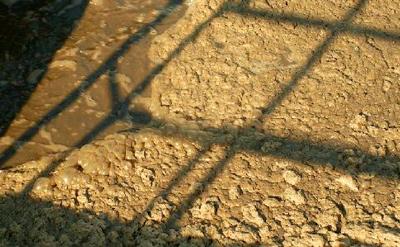 Cómo convertir las aguas residuales en una mina de fósforo